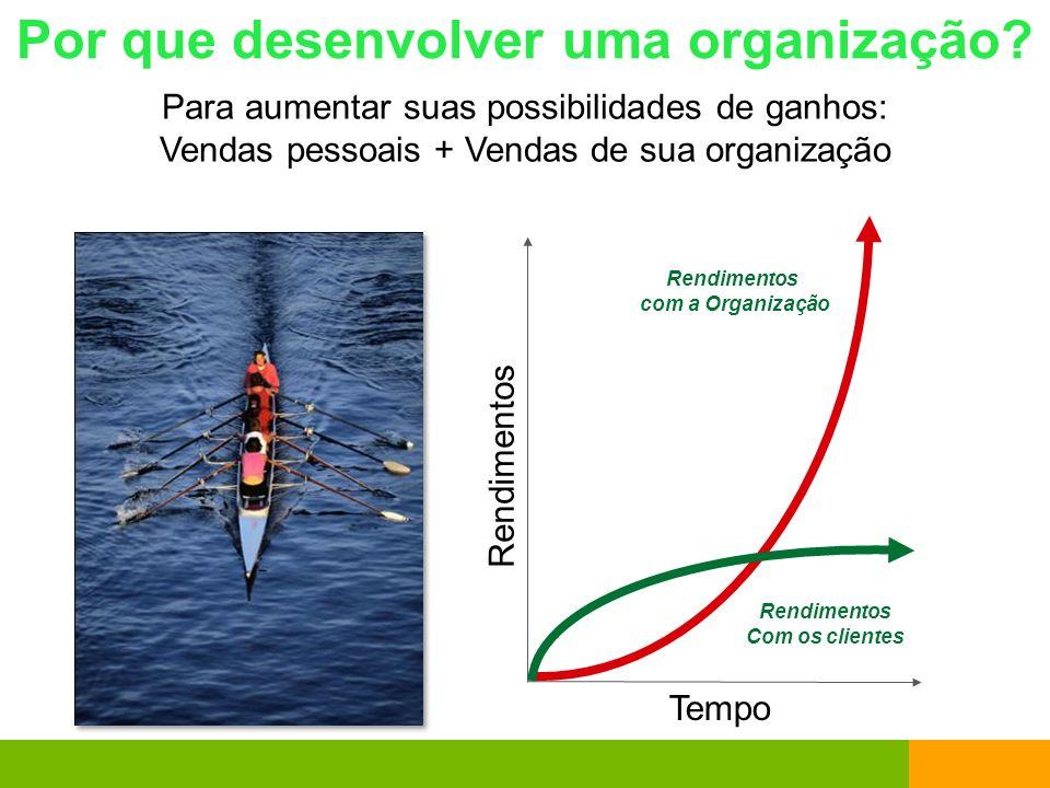 Por que desenvolver uma organização