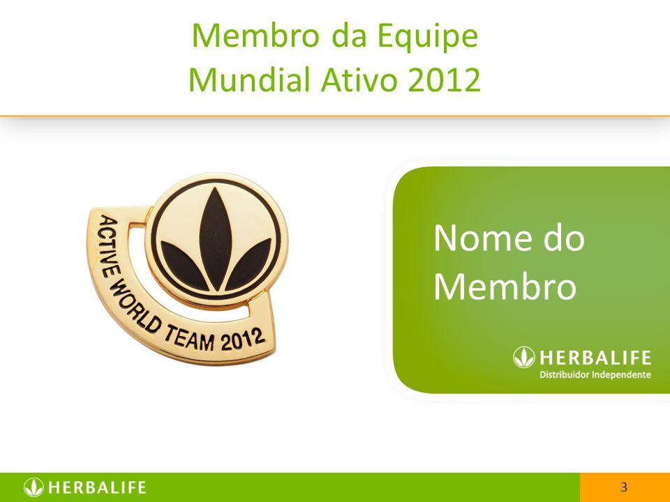 25/03/2017 Membro da Equipe Mundial Ativo 2012 Nome do Membro 3 3
