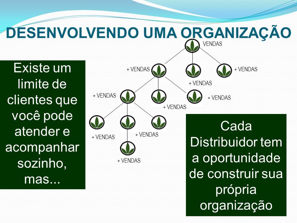 DESENVOLVENDO UMA ORGANIZAÇÃO