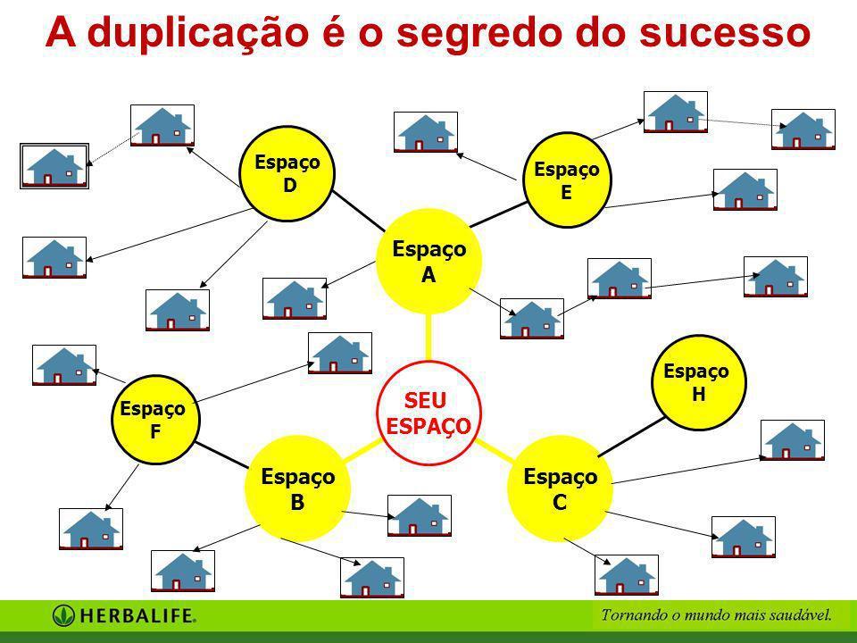 A duplicação é o segredo do sucesso