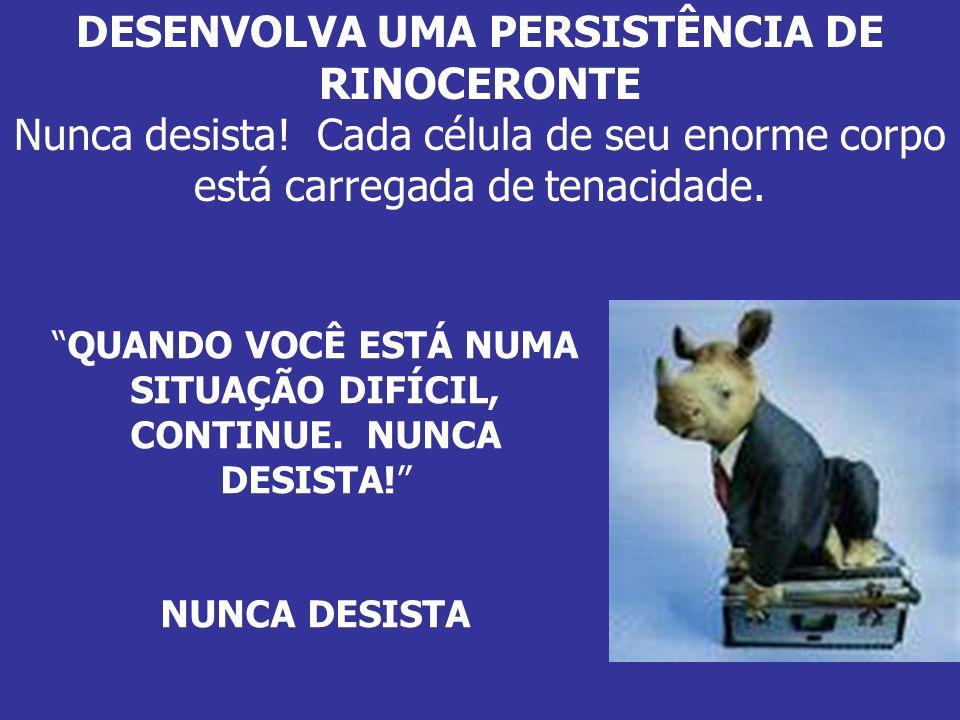 DESENVOLVA UMA PERSISTÊNCIA DE RINOCERONTE