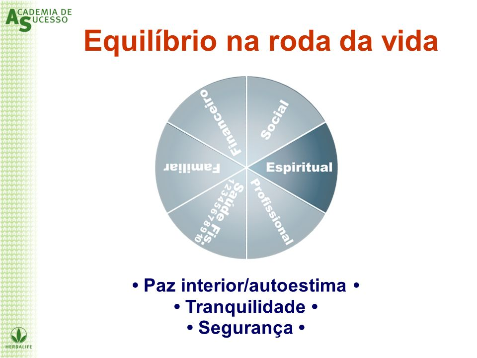 Equilíbrio na roda da vida • Paz interior/autoestima •