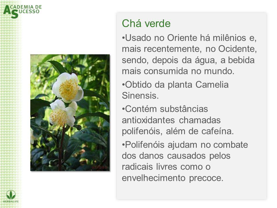 Chá verde Usado no Oriente há milênios e, mais recentemente, no Ocidente, sendo, depois da água, a bebida mais consumida no mundo.
