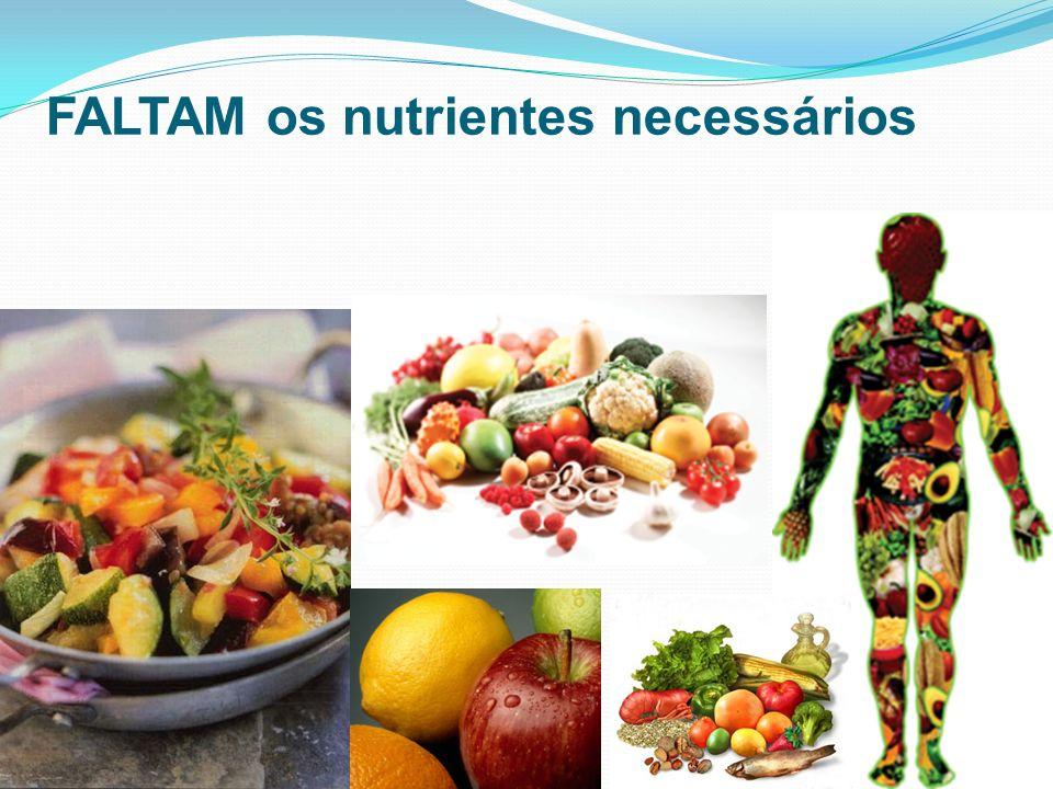 FALTAM os nutrientes necessários