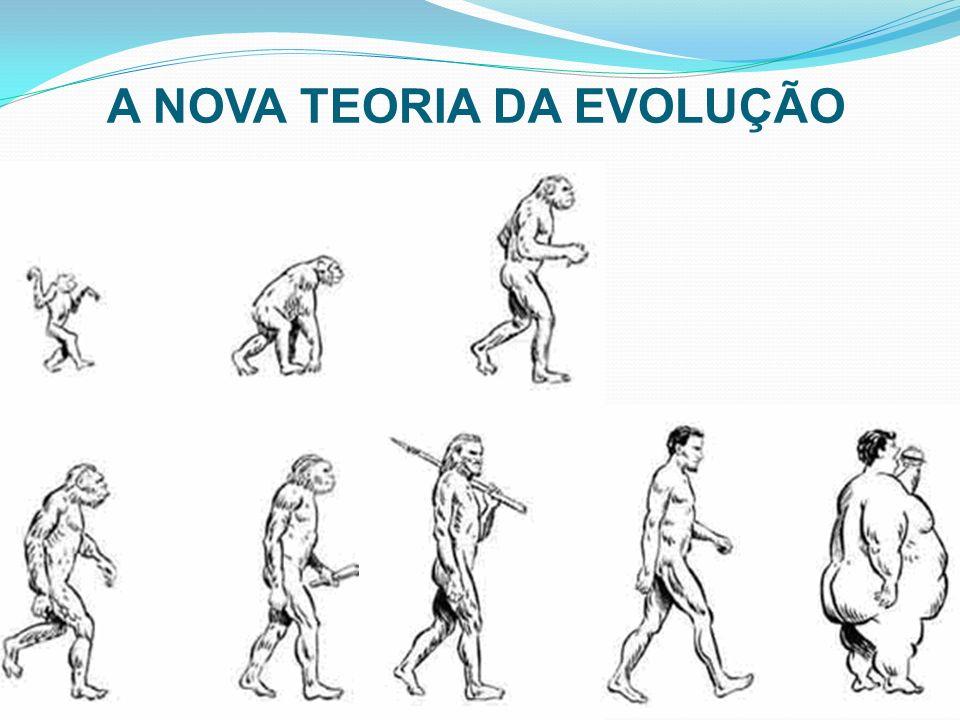 BRASIL_ShapeWorks Piloto