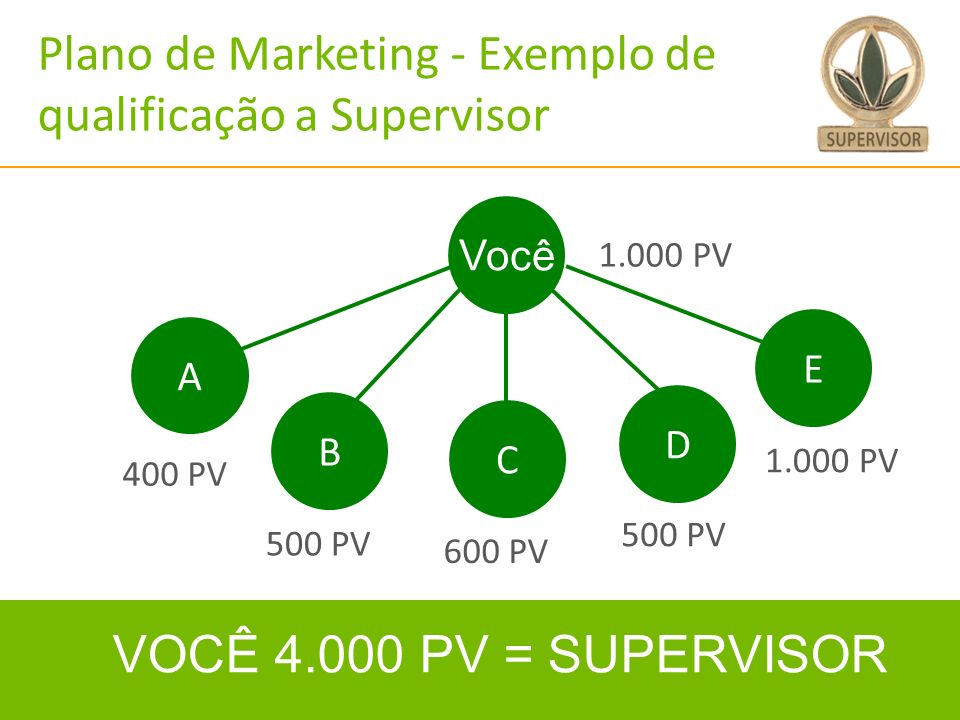 Plano de Marketing - Exemplo de qualificação a Supervisor