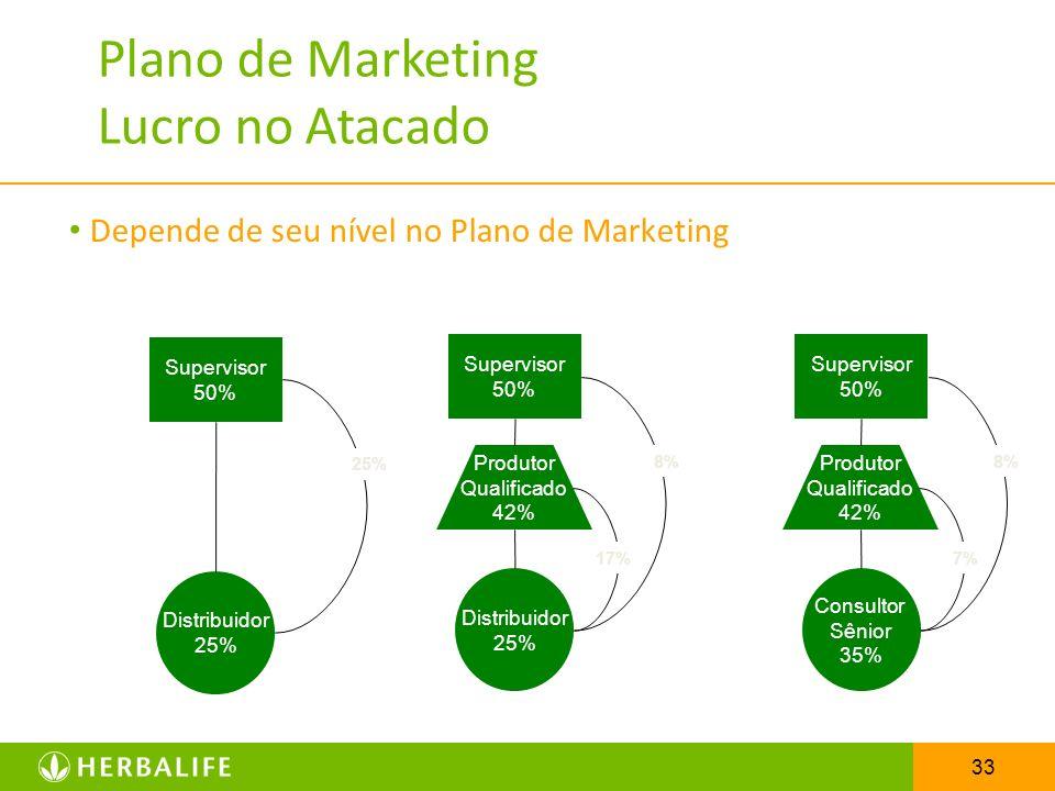 Plano de Marketing Lucro no Atacado