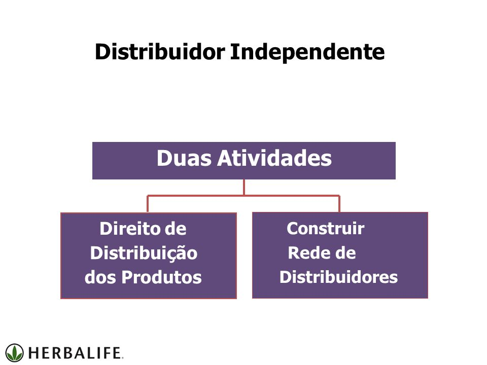 Distribuidor Independente