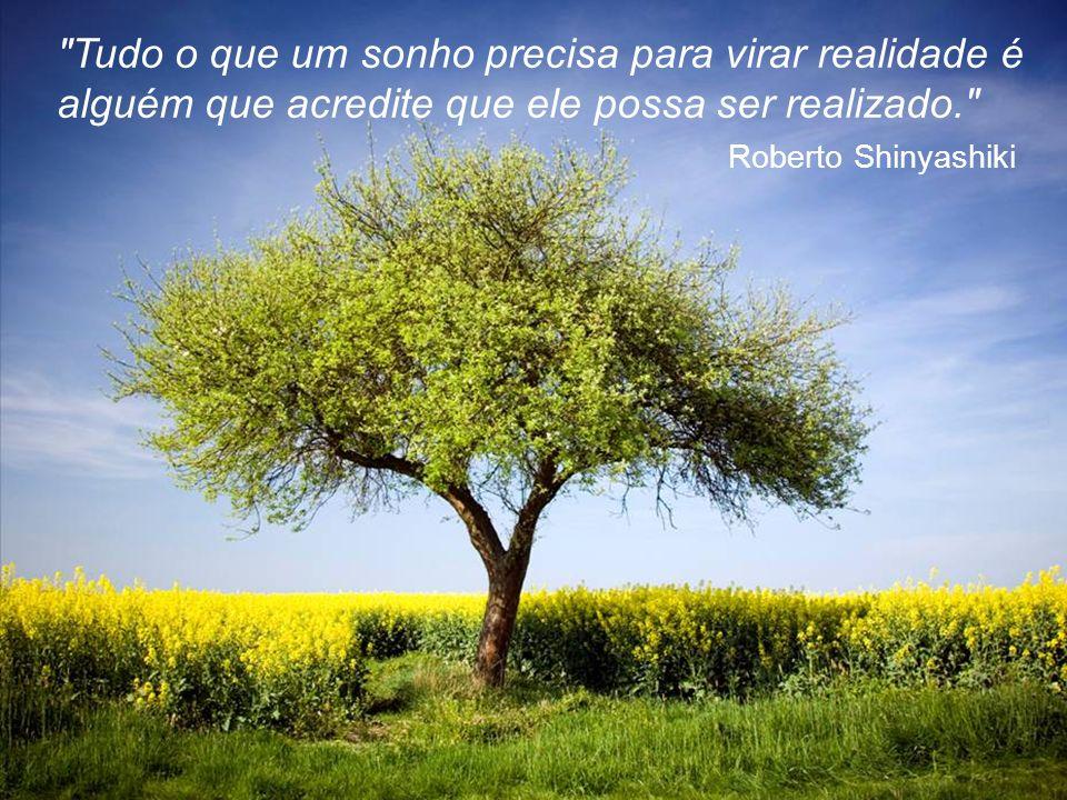 Tudo o que um sonho precisa para virar realidade é alguém que acredite que ele possa ser realizado.