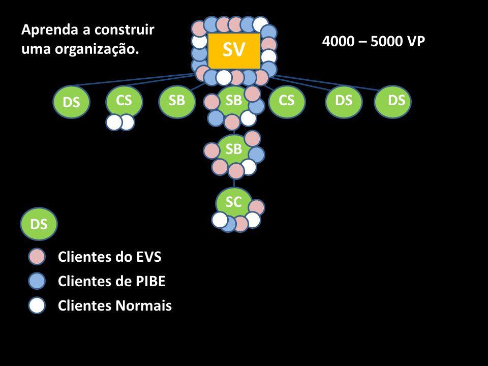 SV Aprenda a construir uma organização. 4000 – 5000 VP DS CS SB SB CS