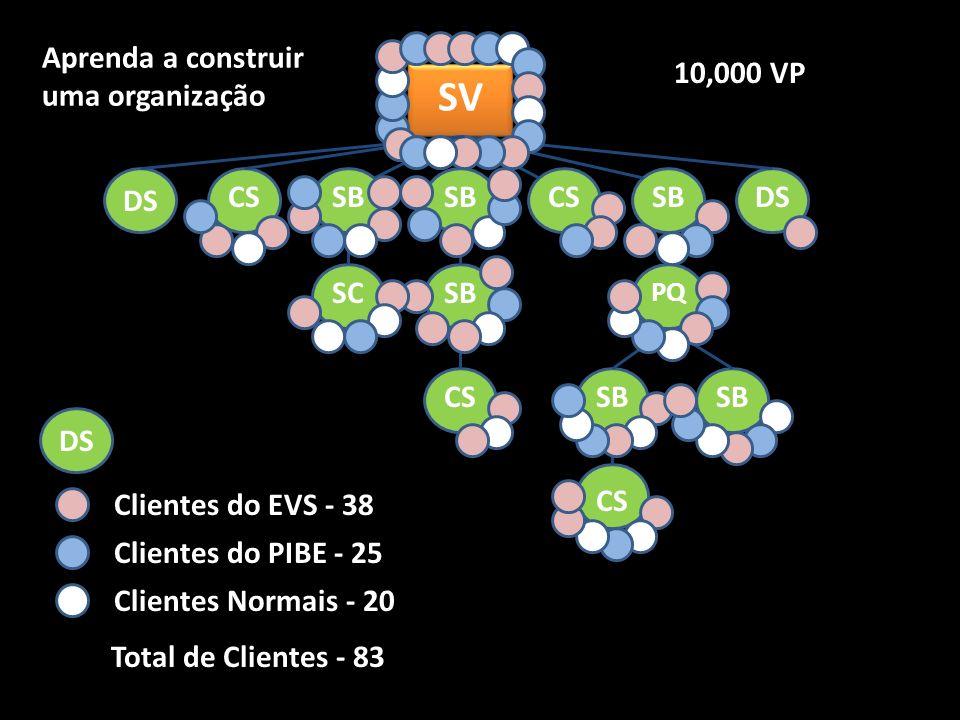SV Aprenda a construir uma organização 10,000 VP DS CS SB SB CS SB DS