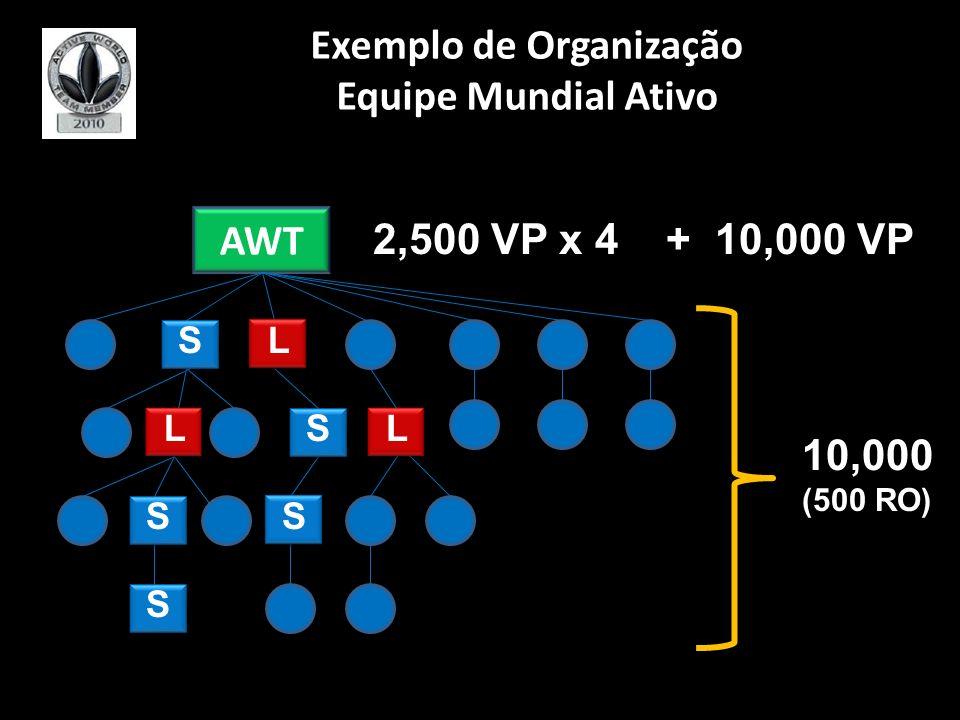 Exemplo de Organização Equipe Mundial Ativo