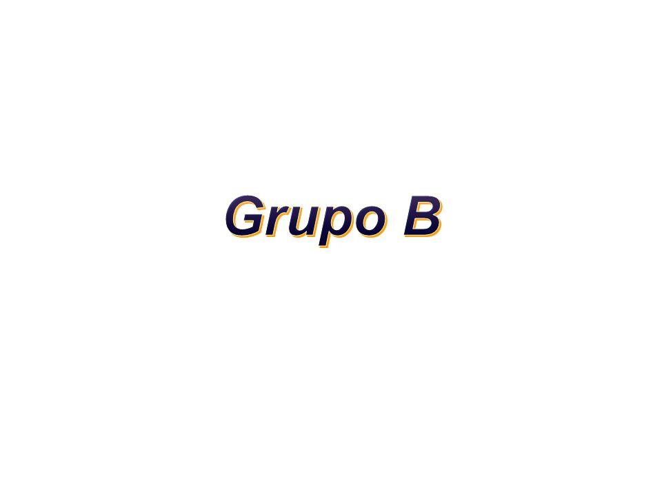 Grupo B 1