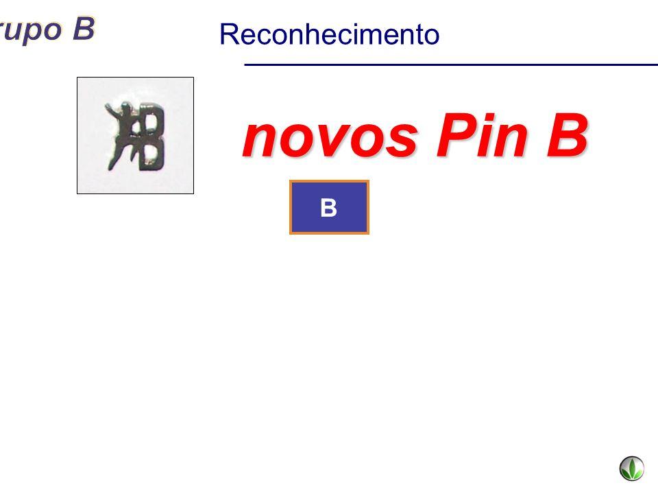 Reconhecimento novos Pin B B