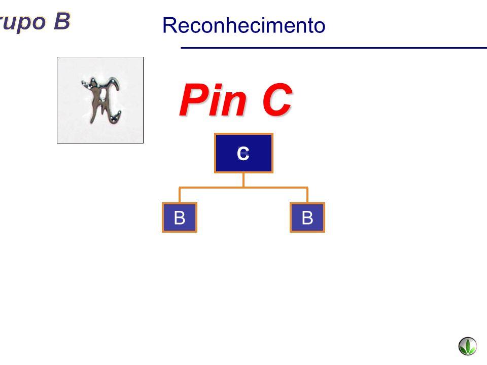 Reconhecimento Pin C C B B B