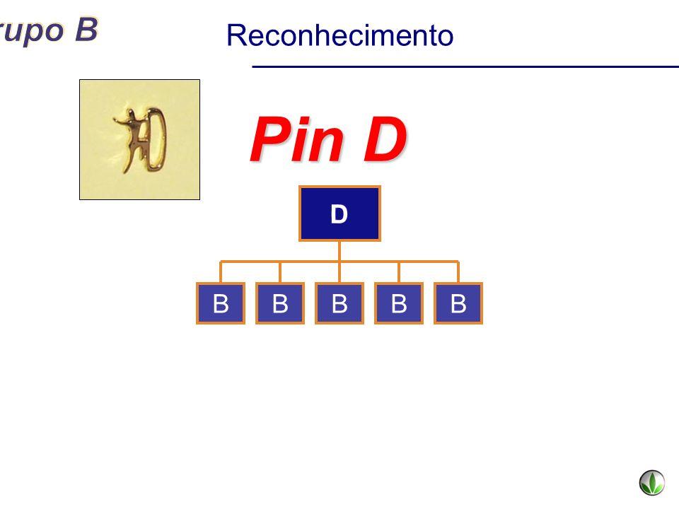 Reconhecimento Pin D D C B B B B B