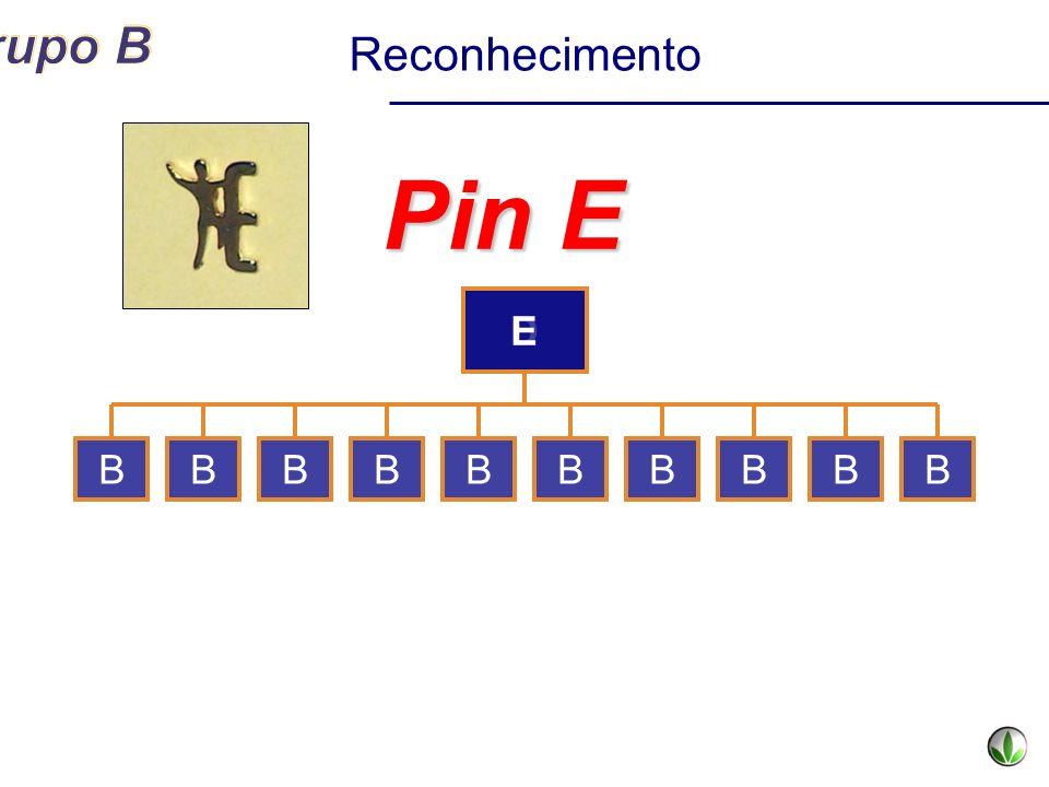 Reconhecimento Pin E E D B B B B B B B B B B