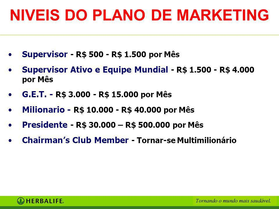 NIVEIS DO PLANO DE MARKETING