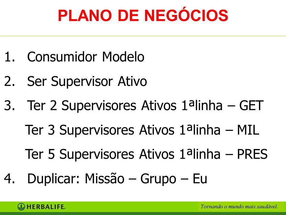 PLANO DE NEGÓCIOS Consumidor Modelo Ser Supervisor Ativo