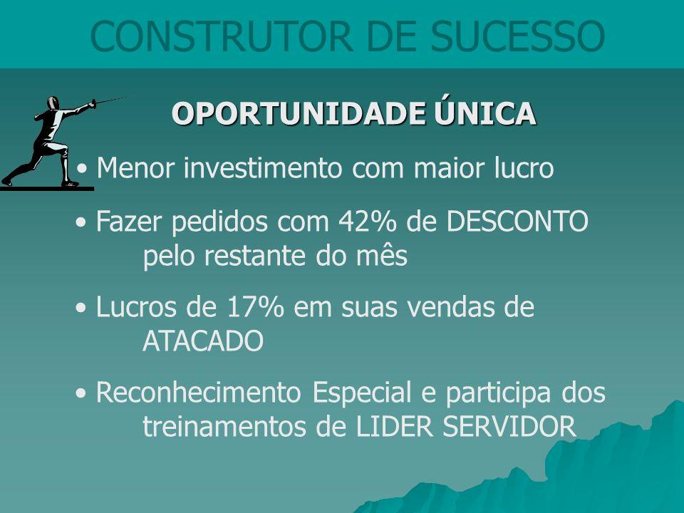 CONSTRUTOR DE SUCESSO Menor investimento com maior lucro