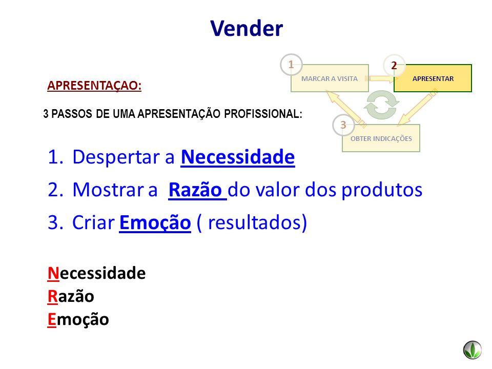 3 PASSOS DE UMA APRESENTAÇÃO PROFISSIONAL: