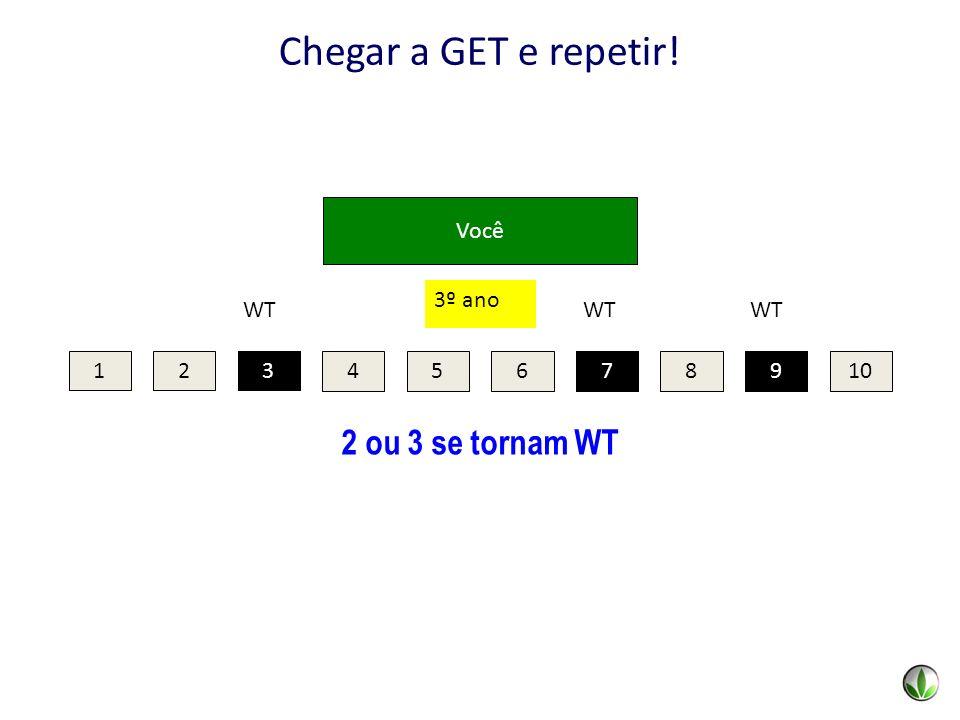 Chegar a GET e repetir! 2 ou 3 se tornam WT Você 3º ano 7 9 WT 3 1 2 3