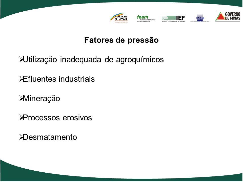 Utilização inadequada de agroquímicos Efluentes industriais Mineração