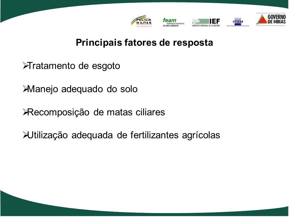 Principais fatores de resposta