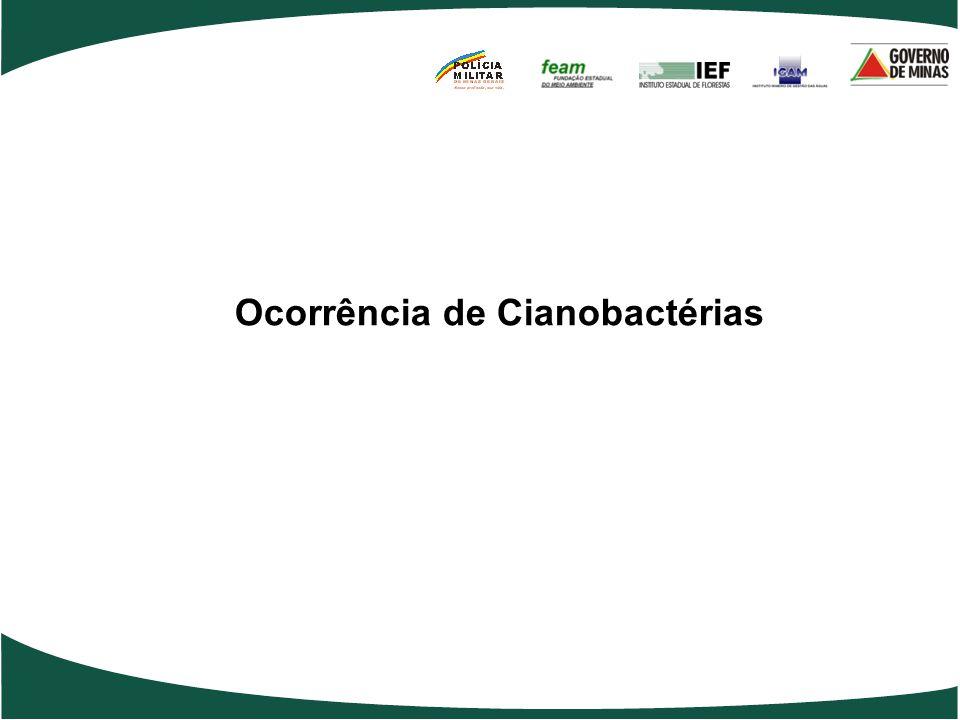 Ocorrência de Cianobactérias