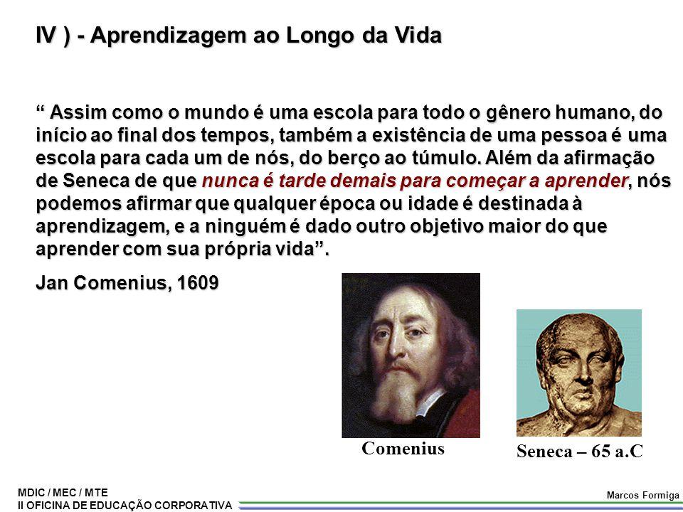 IV ) - Aprendizagem ao Longo da Vida