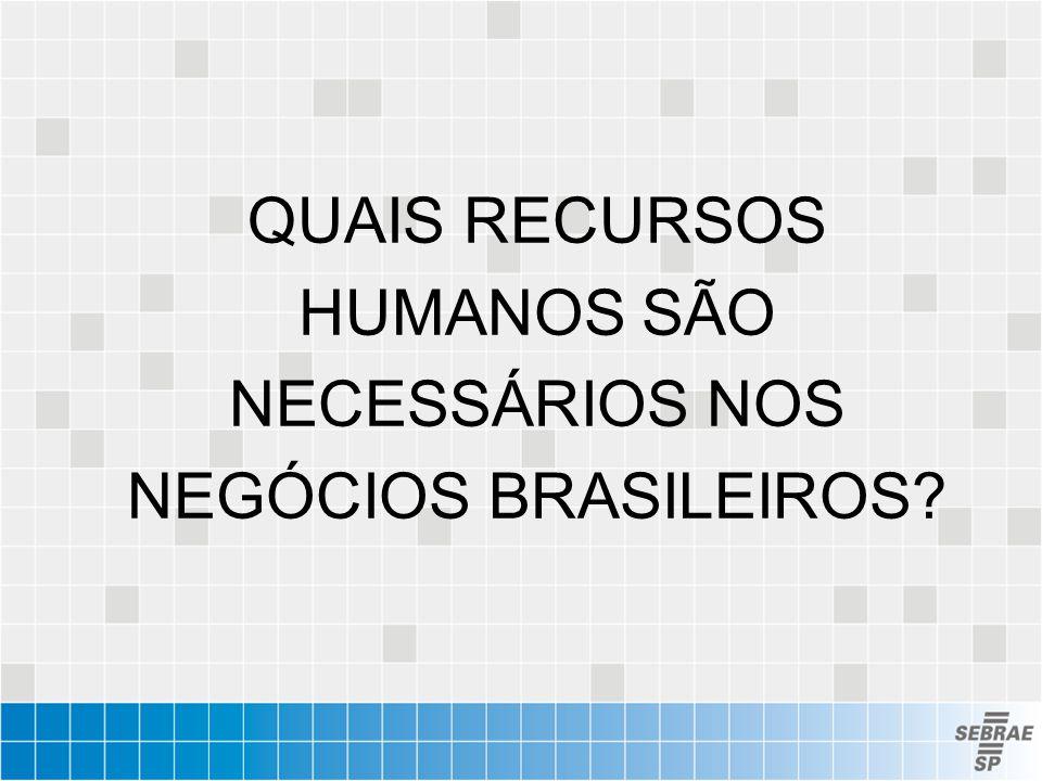 QUAIS RECURSOS HUMANOS SÃO NECESSÁRIOS NOS NEGÓCIOS BRASILEIROS