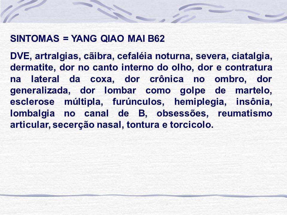 SINTOMAS = YANG QIAO MAI B62