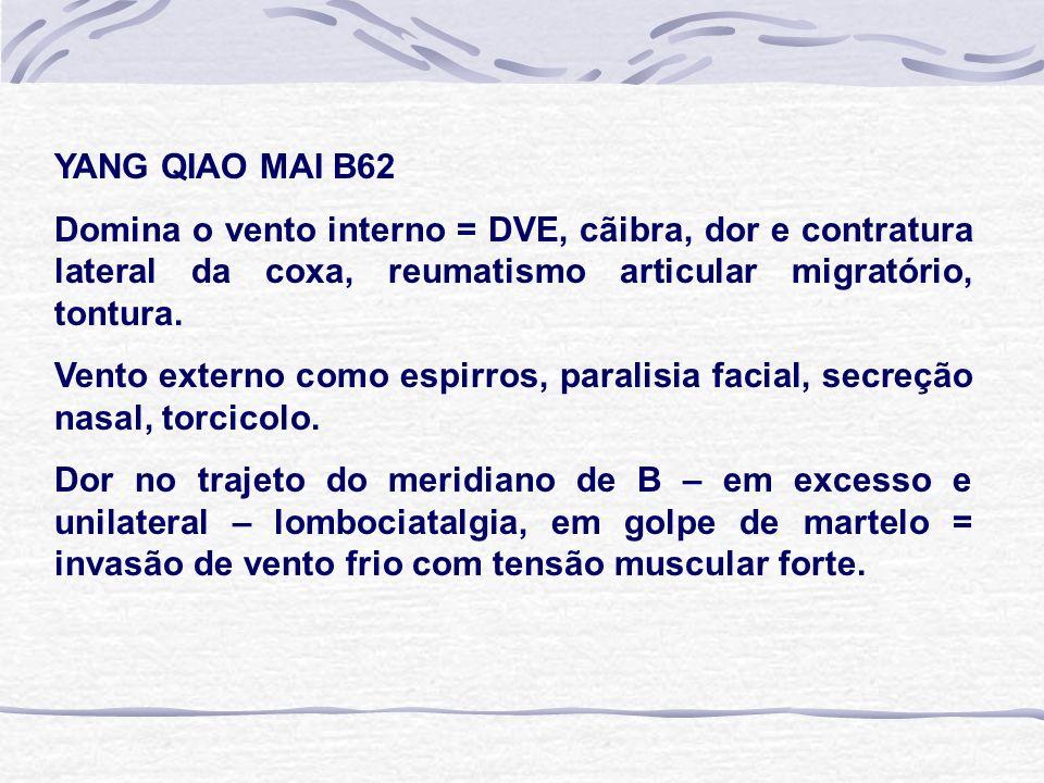 YANG QIAO MAI B62 Domina o vento interno = DVE, cãibra, dor e contratura lateral da coxa, reumatismo articular migratório, tontura.