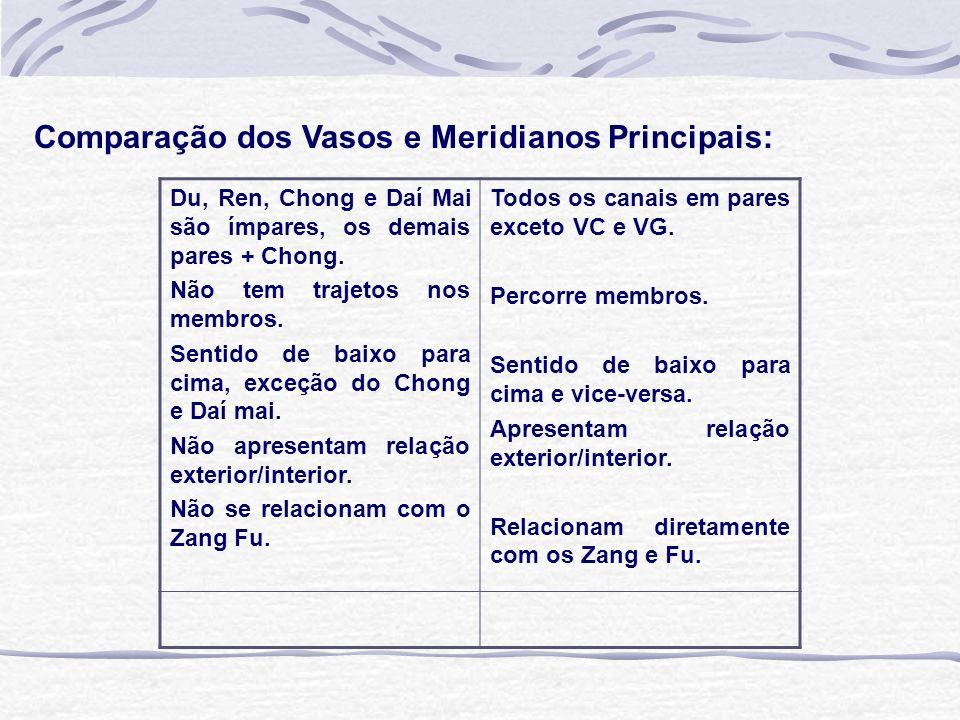 Comparação dos Vasos e Meridianos Principais: