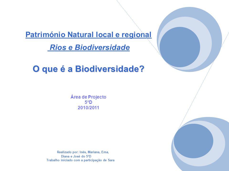 Património Natural local e regional Rios e Biodiversidade O que é a Biodiversidade Área de Projecto 5ºD 2010/2011
