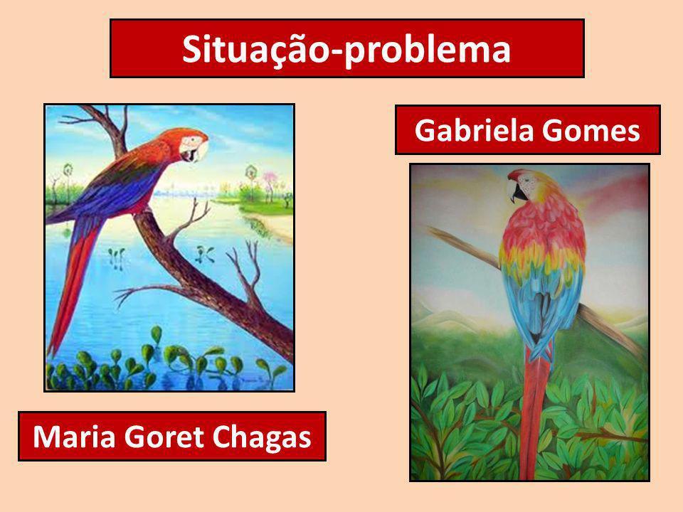 Situação-problema Gabriela Gomes Maria Goret Chagas