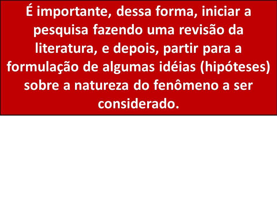 É importante, dessa forma, iniciar a pesquisa fazendo uma revisão da literatura, e depois, partir para a formulação de algumas idéias (hipóteses) sobre a natureza do fenômeno a ser considerado.