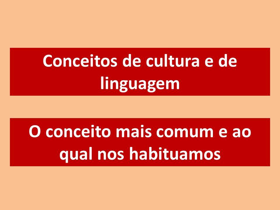 Conceitos de cultura e de linguagem