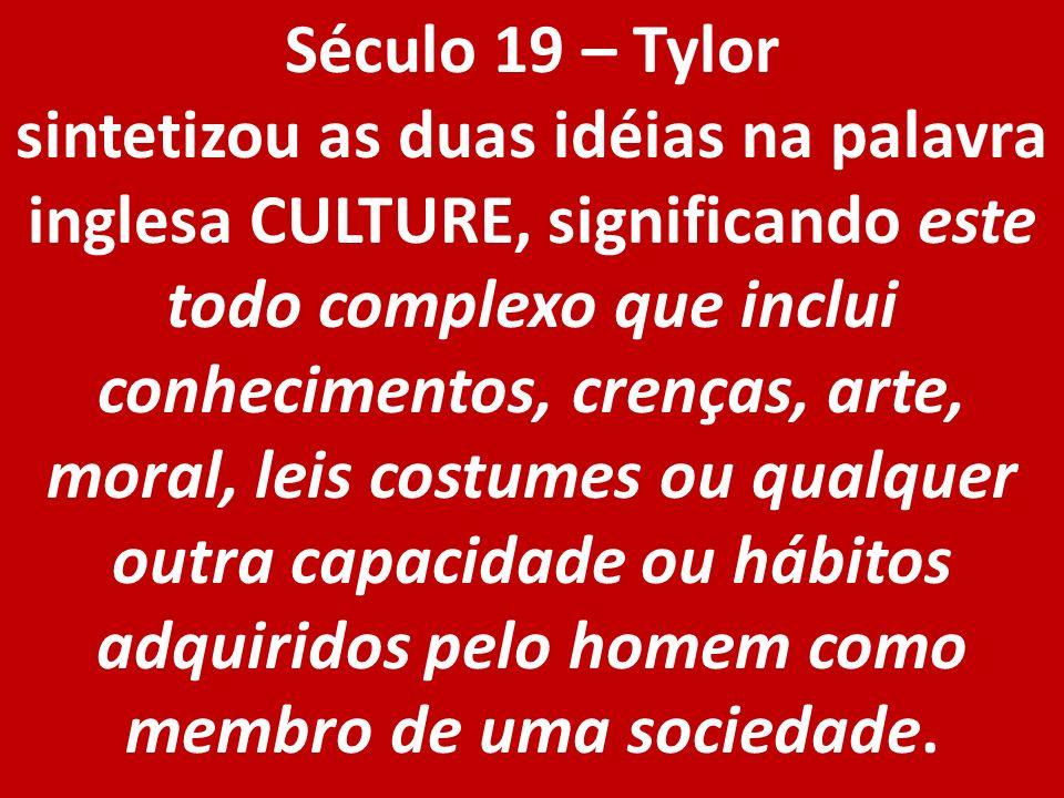 Século 19 – Tylor