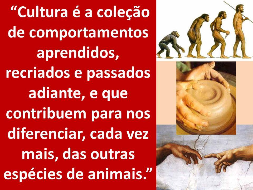 Cultura é a coleção de comportamentos aprendidos, recriados e passados adiante, e que contribuem para nos diferenciar, cada vez mais, das outras espécies de animais.