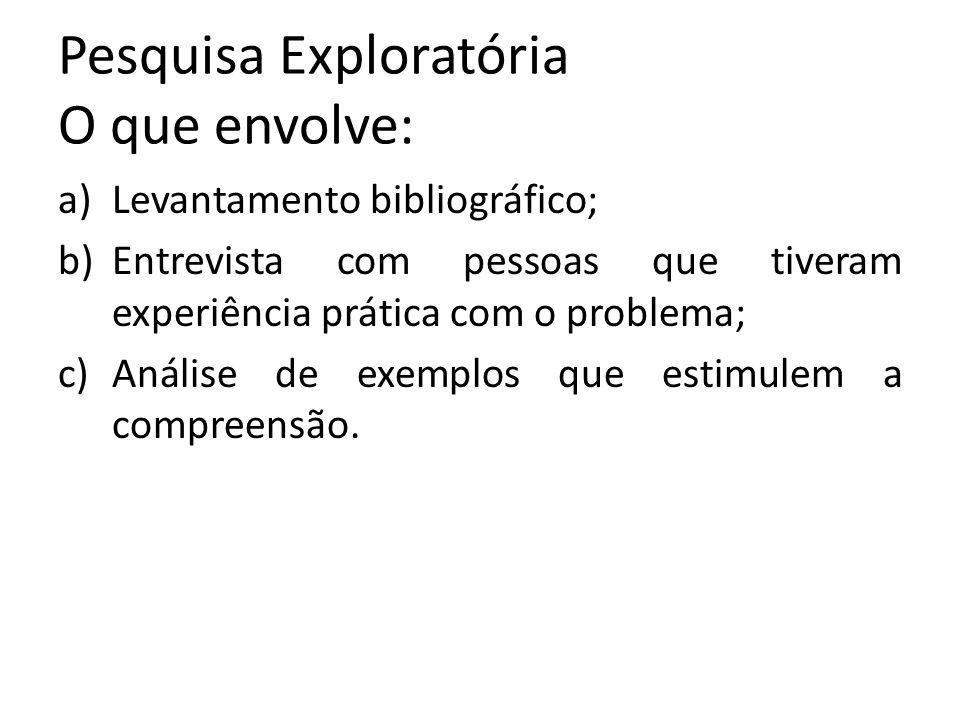 Pesquisa Exploratória O que envolve: