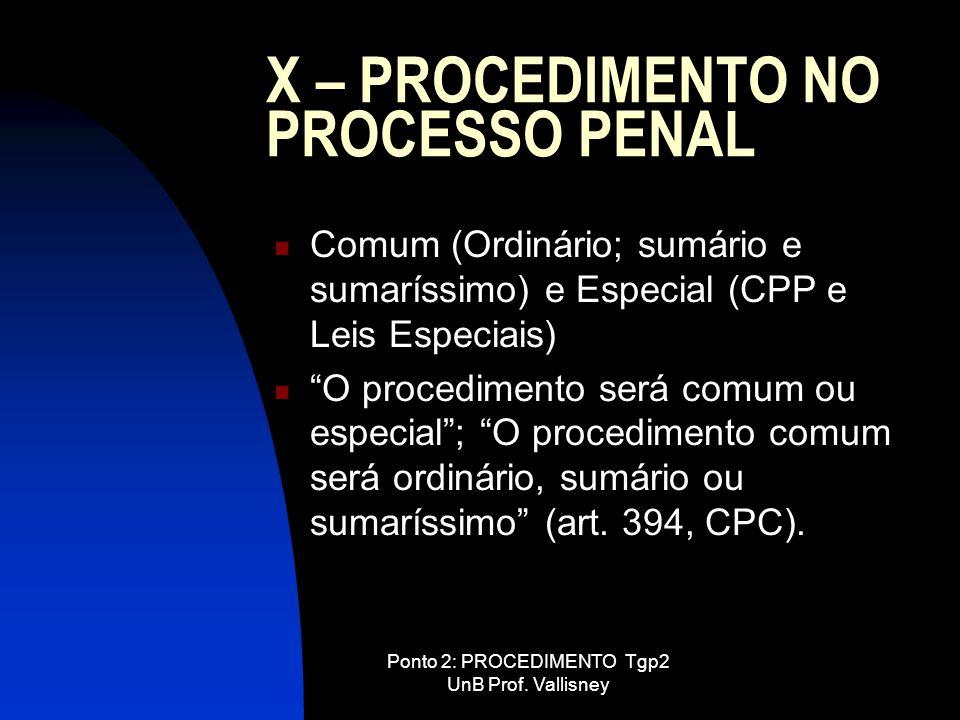 X – PROCEDIMENTO NO PROCESSO PENAL