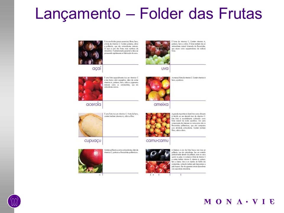 Lançamento – Folder das Frutas