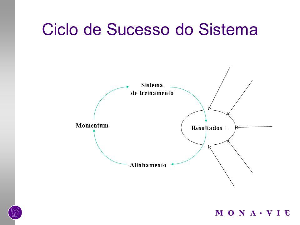 Ciclo de Sucesso do Sistema