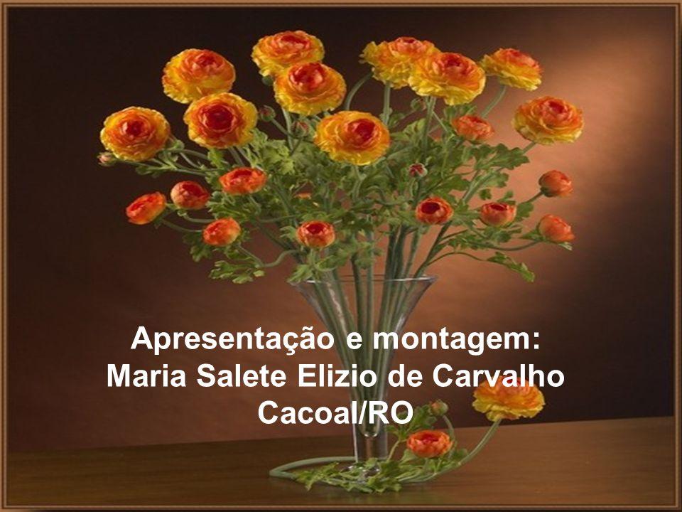 Apresentação e montagem: Maria Salete Elizio de Carvalho