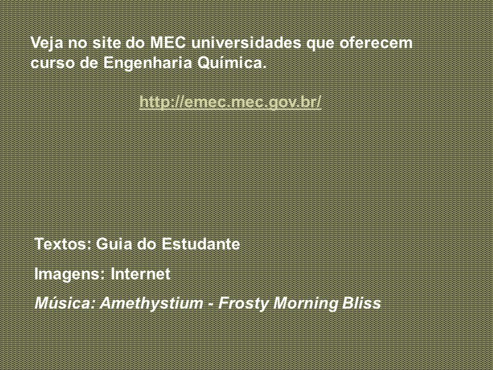Veja no site do MEC universidades que oferecem curso de Engenharia Química.