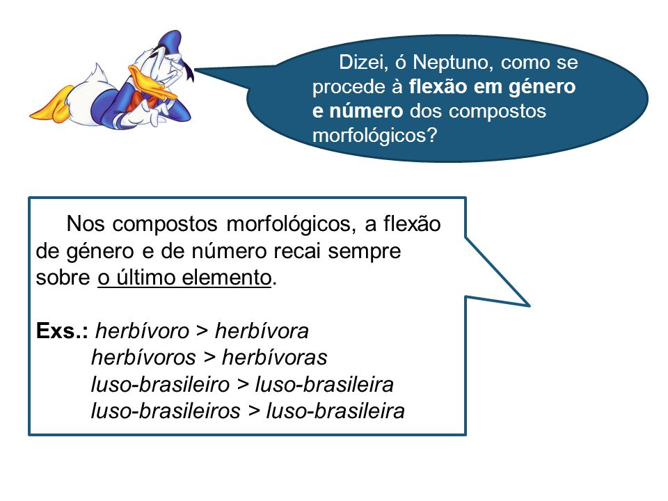 Exs.: herbívoro > herbívora herbívoros > herbívoras