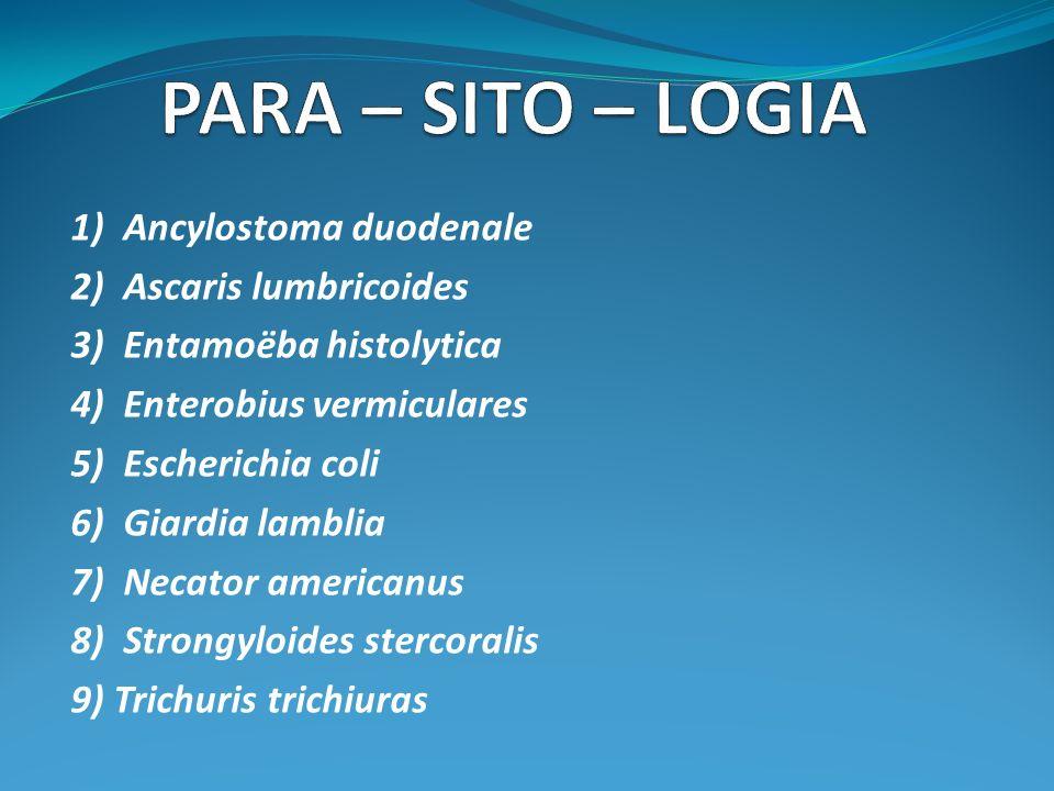 PARA – SITO – LOGIA 1) Ancylostoma duodenale 2) Ascaris lumbricoides