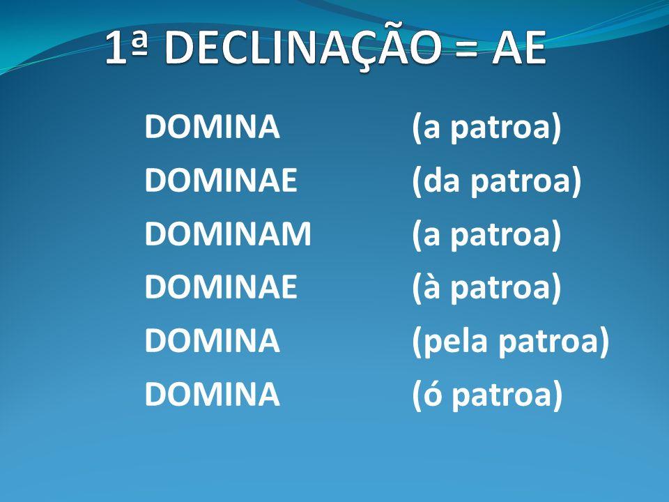 1ª DECLINAÇÃO = AE DOMINA (a patroa) DOMINAE (da patroa)