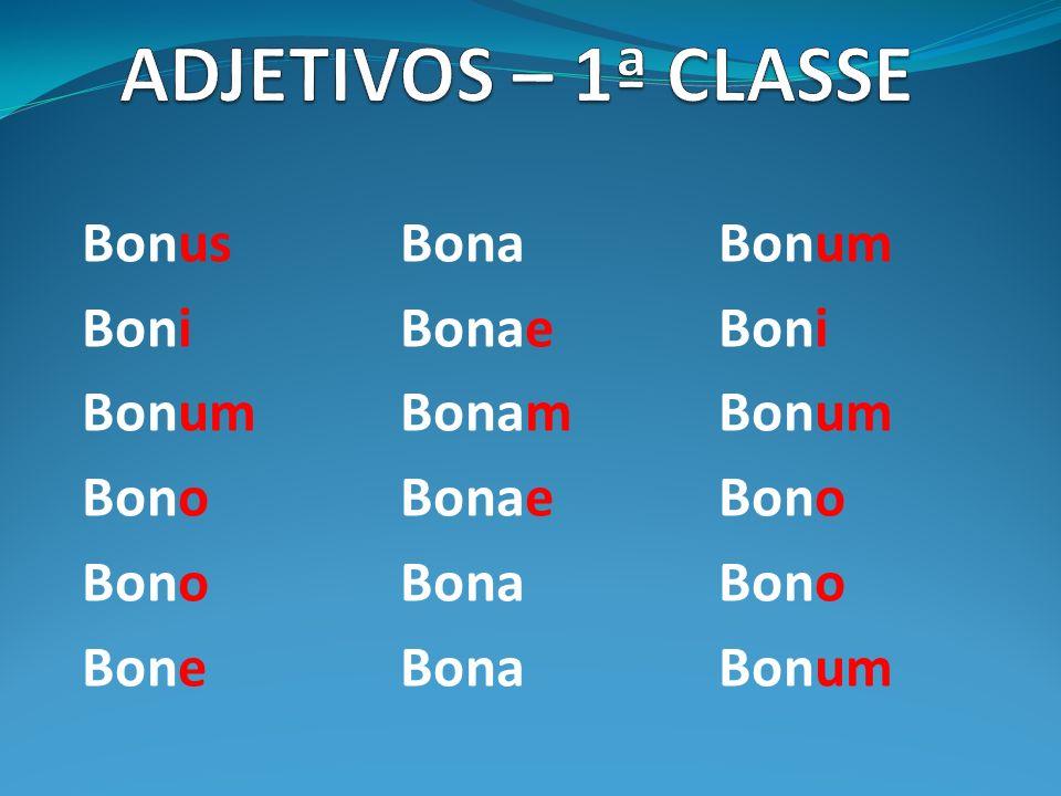 ADJETIVOS – 1ª CLASSE Bonus Bona Bonum Boni Bonae Boni